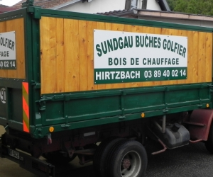VEHICULES - CAMIONS - GOLFIER
