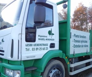 VEHICULES - CAMIONS - WADEL 2